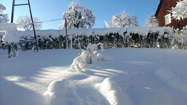 Zima w ogrodzie, czyli jak przechowywać narzędzia ogrodnicze