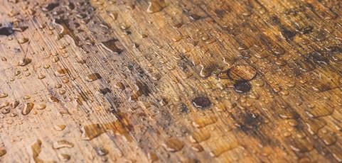 Oleje do drewna – co powinniśmy o nich wiedzieć?